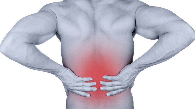 What Spine Problems Do To Your Internal Organs?