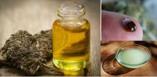 Coconut and cannabis oil