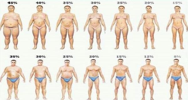 Cumin powder for weight loss