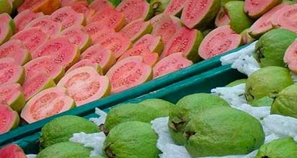 health benefits of guava fruit