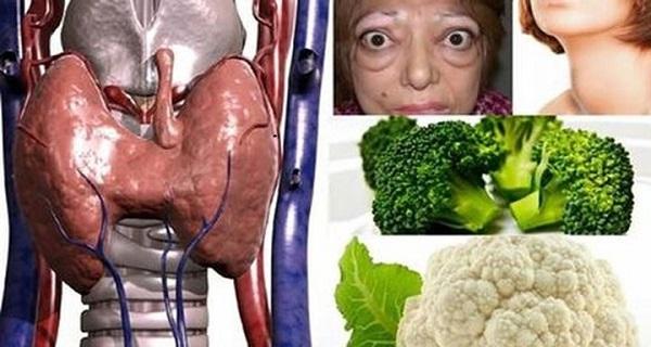 Diet plan for thyroid patients