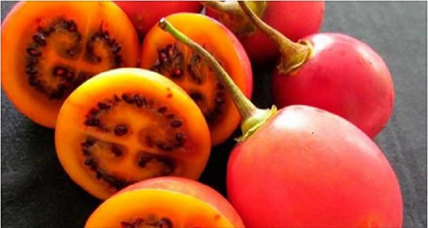 tomato benefits for weight loss