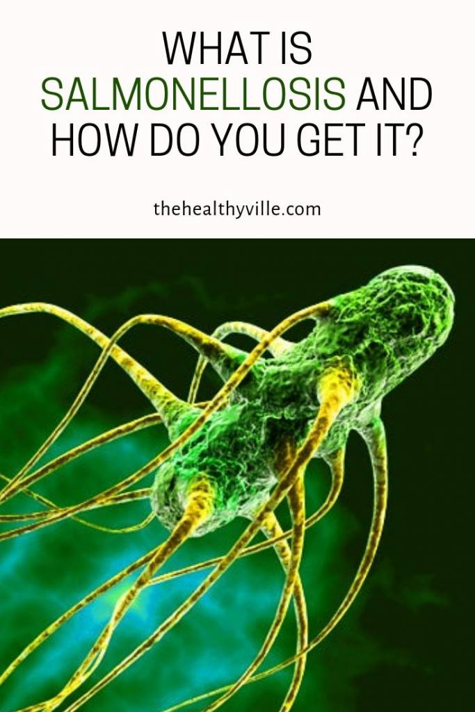 What Is Salmonellosis and How Do You Get It_